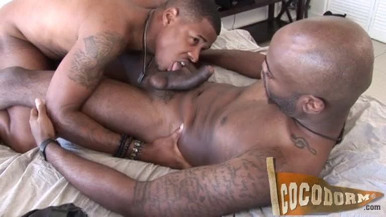 free gay black porn sites Free gay porn Black videos provided by Gay Man Flicks.