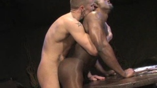 Night Maneuvers Interracial Sex