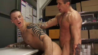 Trenton Ducati Breaks in Brice Banyan