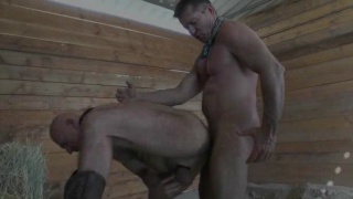 Cowboy Threesome Sex in Barn