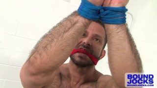Adam Champ All Tied Up