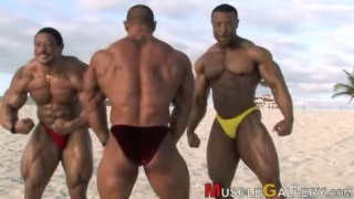 Muscle on the beach - Roelly Winklaar
