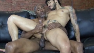 Jerry Stearns sticks his huge cock in Draven Torres
