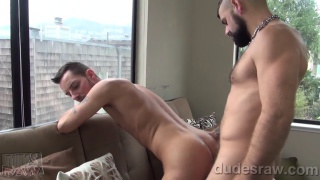 bearded jon shield tops gio ryder