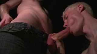 guarda il video: serious cock swallowing in the basement