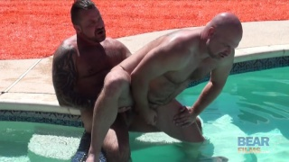 bear men fucking in the pool