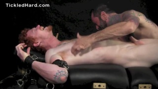 redhead stud restrained on the tickling table
