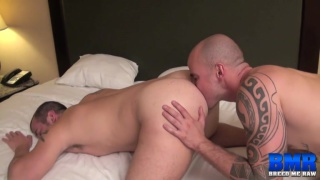 Cam Christou bare fucks and breeds Chip Young