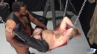 Tony Banks fucks Bo Francis in leather sling