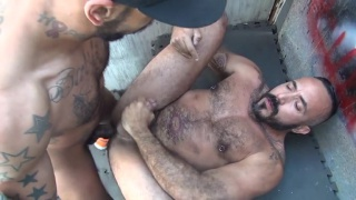 Hairy Raw Pigs with alessio romero