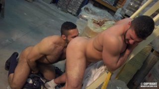 EASY PREY with ADAM CHAMP & MARCO RUBI