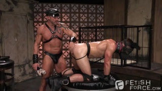Permission with Mike DeMarco & Dallas Steele
