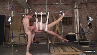 Charley Cole tied up and hung for Sean Taylor's pleasure