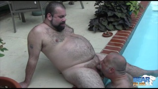 skinny dipping hairy bear gets blown by the pool