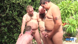cocksucker gets birthday present from bear men trio