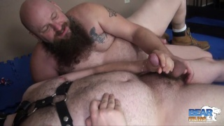 the year's best cumshots from bear films