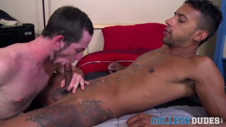 Jay Alexander fucks Toby Springs on the bed