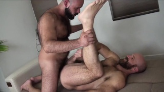bald bearded daddies in Bareback fuck session