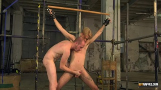 Boy In need Of An Arse Ravaging Part 3 with Jacob Daniels & Sean Taylor