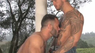 Logan McCree and Wilfried Knight