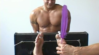 stripper Bailey locked in the foot stockade for a tickling session