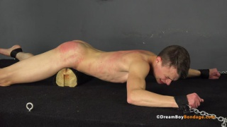Austin Young - Daddy's Boy - Chapter 6 at Dreamboy Bondage