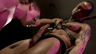 Worshipping Leather Man Cock