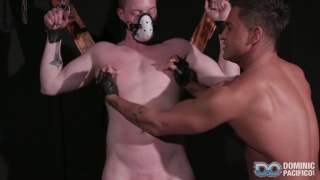 DOMINATING RILEY with riley ward & dominic pacifico