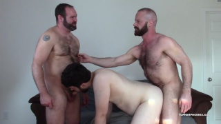 hairy men topher & MuscleBull spit-roast Fuck David Coyote