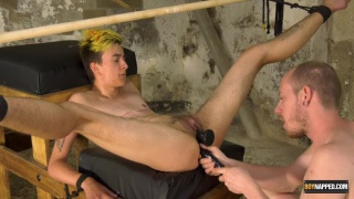 master trains a trans lad in his dungeon