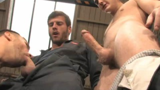 Three hard studs fuck