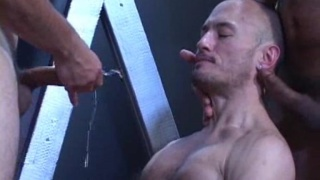 offering his hole up for cum and piss