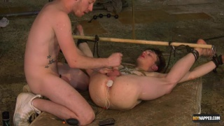 Twinky Plaything Properly Used - Part 3 with Alex Faux & Sean Taylor