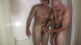 Tattooed Thugs Bareback