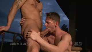 JOHNNY VENTURE POUNDS DARIUS FERDYNAND