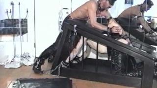 Caged guy sucks dick while gets dildo up his pooper