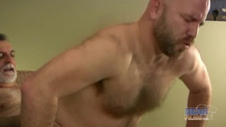 Latin Wolf Fucking his Furry Bald Buddy