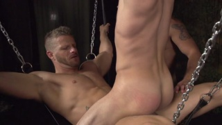 Sweatbox Threesome - Jeremy Stevens, Cooper Reed, & Shane Jacobs