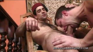 Fantasy Arabian 3-way