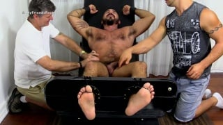 Hairy Stud Alessio Romero Gets Tickle Tortured