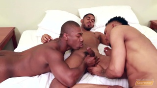 nice 'n naughty starring Diaon Starr, Damian Brooks and XL
