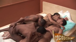 4 black guys sucking and fucking on a bed