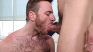 Brody fields's porn audition