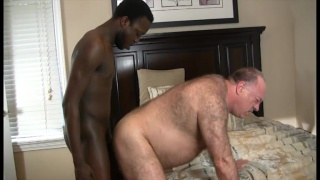 HUGE BLACK COCK FOR DADDY BEAR