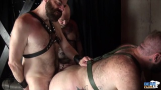 Steve Sommers bare fucks Daddy cub's ass