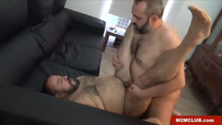 hot spaniard bear couple fuck on couch