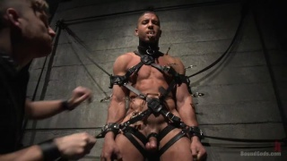 tough new slave Mike Maverick needs training