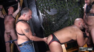 Dungeon Pigs Rutting  with Jay Ricci and Luis Casola