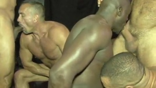 The Warmup with Jack Handle, Diesel Bear, and more