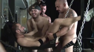 chad brock in Pig Week Gorilla Porn Sex Orgy 5
